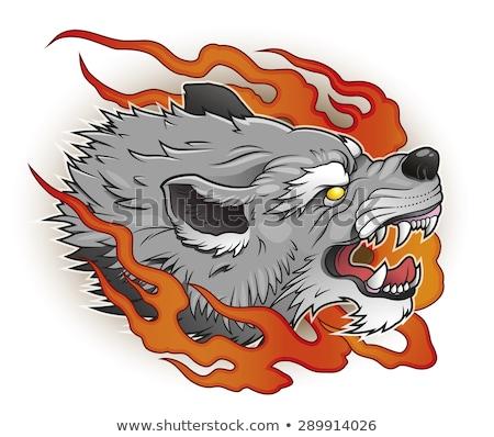 Tattoo Flame Wolf, vector illustration Stock photo © carodi