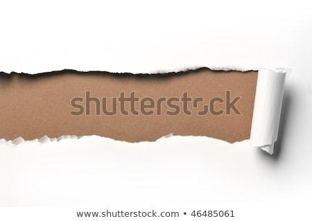 gescheurd · vel · papier · witte · abstract · gebroken - stockfoto © Paha_L