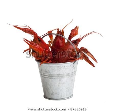 three boiled crawfish on white stock photo © bsani