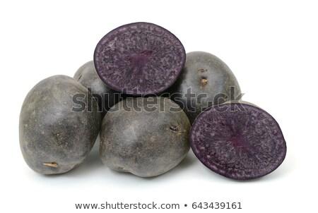 紫色 白 生 青 新鮮な ストックフォト © tony4urban