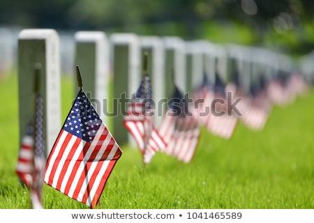 Headstones at the Arlington national Cemetery Stock photo © meinzahn