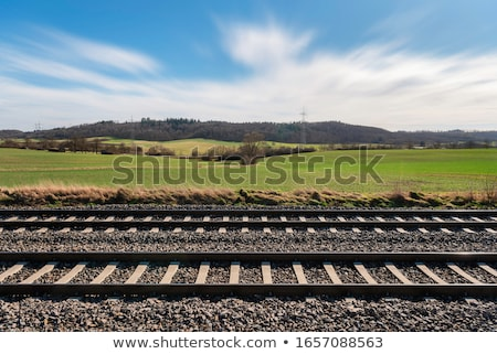 Scene with railroad in the field Stock photo © bluering