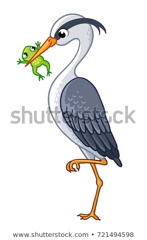 cute Grey Heron cartoon Stock photo © jawa123