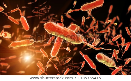 Vibrio Cholerae Bacteria Stock photo © idesign