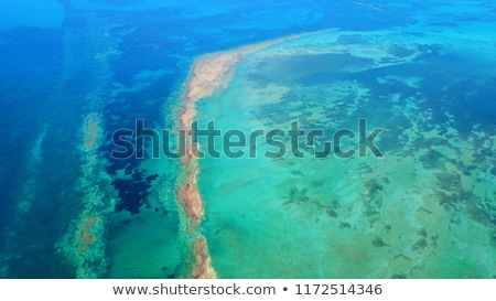 Maldives beach from birds eye view. Aerial view on Maldives island, Ari atoll. Tropical islands and  Stock photo © icemanphotos