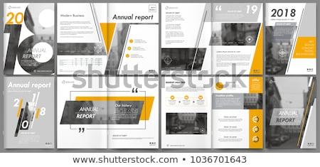vector infographic report template   figure stock photo © orson