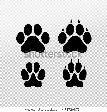 dog or cat paw print flat icon for animal apps and websites paw print vector stock photo © hermione