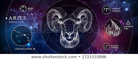 állatöv asztrológia kos felirat kör horoszkóp Stock fotó © Krisdog