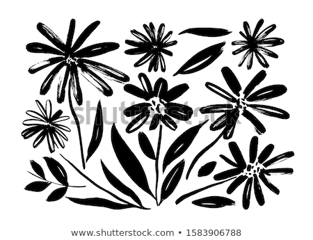 flowers black silhouettes stock photo © biv