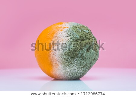ripe and rotten oranges Stock photo © Digifoodstock