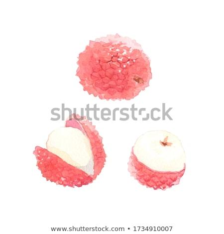 Aquarel illustratie geheel half verf vruchten Stockfoto © Sonya_illustrations