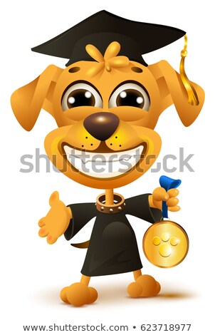 Dog school graduation. Yellow puppy in black robe holds reward Stock photo © orensila