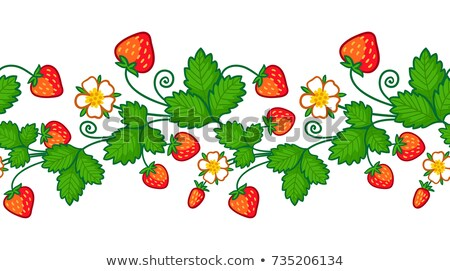 Red ripe strawberries, white flowers and green leaves. Seamless background Stock photo © orensila