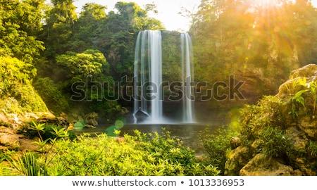 Cascata panorama acqua albero foresta natura Foto d'archivio © THP