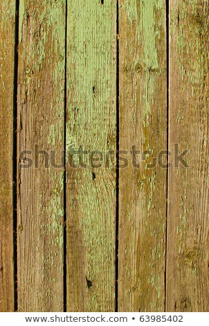 Old wooden fence flaky green paint close up. Stock photo © latent