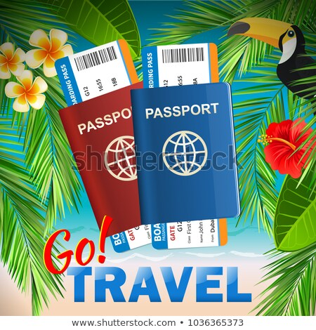 Paszport linia lotnicza bilety tropikalnych morza międzynarodowych Zdjęcia stock © MarySan