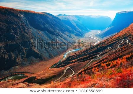 autumn landscape with a river in a mountain gorge stock photo © kotenko