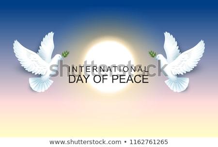 Międzynarodowych dzień pokoju pary utrzymać oliwy Zdjęcia stock © orensila