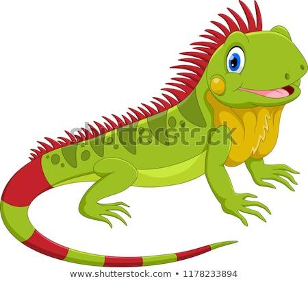 Happy Cartoon Iguana Stock photo © cthoman