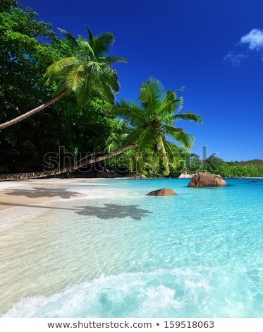 Plage Seychelles belle source ciel nature Photo stock © iko