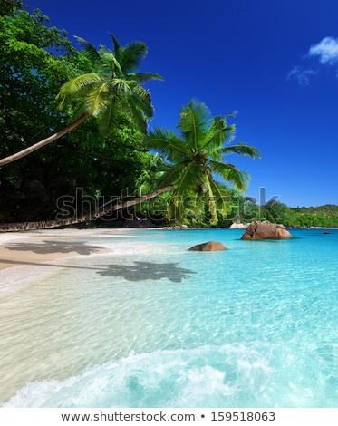 plaj · Seyşeller · ada · gökyüzü · su · manzara - stok fotoğraf © iko