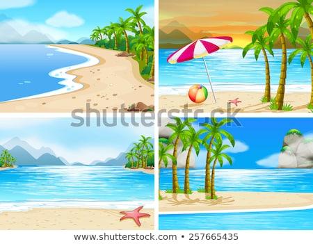 plaj · hindistan · cevizi · ağaçlar · örnek · gökyüzü · manzara - stok fotoğraf © colematt