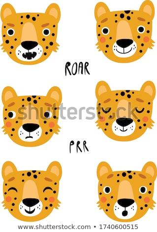 Cartoon Leopard знак иллюстрация белый Сток-фото © cthoman