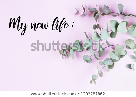 green floral composition with my new life plans stock photo © neirfy