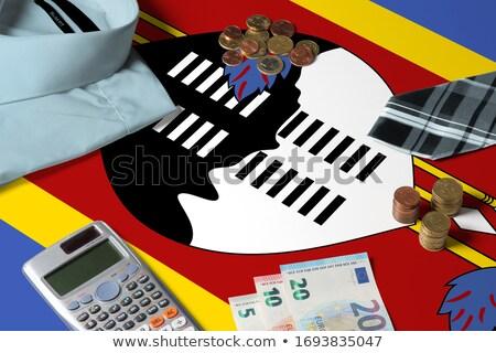 Huis vlag Swaziland rij witte huizen Stockfoto © MikhailMishchenko