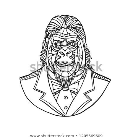 Gorilla smoking buste lijn illustratie Stockfoto © patrimonio