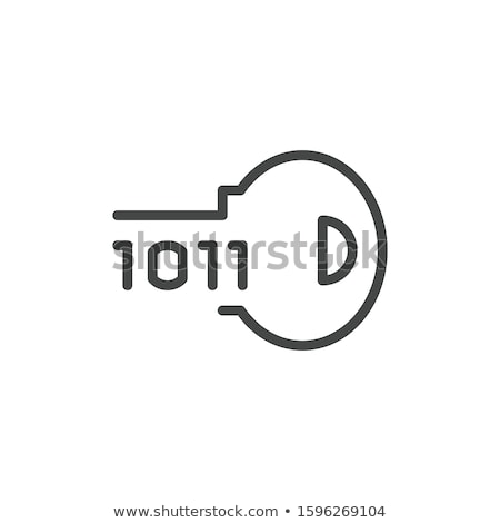 Cipher Concept Vector. Software Encryption Cipher Algorithm. Data Security. Illustration Stock photo © pikepicture