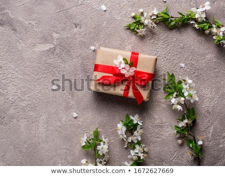 Foto d'archivio: Ciliegio · prugna · fiore · scatola · regalo · beige · albero