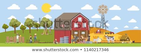 farmer feeding domestic animals on farm cartoon stock photo © robuart