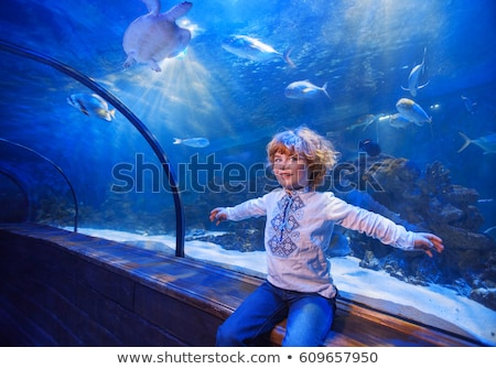 aquarium and boy, visit in oceanarium, underwater tunnel and kid, wildlife underwater indoor, nature Stock photo © galitskaya