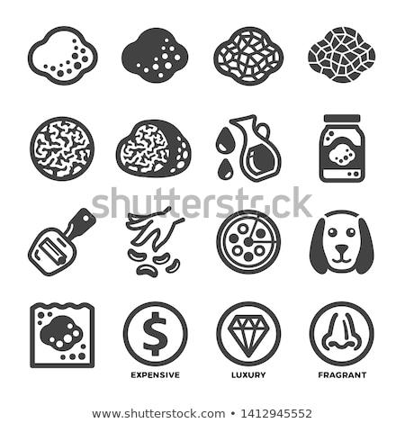 truffle icon set Stock photo © bspsupanut