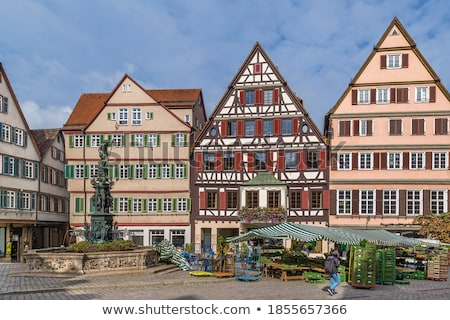 square in tubingen germany stock photo © borisb17