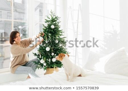 положительный Платья вверх рождественская елка спальня Сток-фото © vkstudio