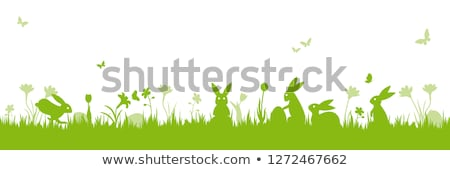 Easter Vector Background With Daffodils and Eggs Stock photo © solarseven