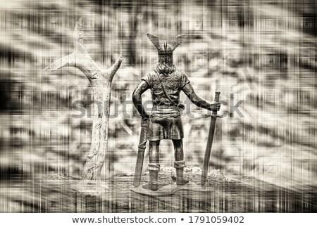 crossed viking long swords stock photo © paulfleet