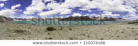 Panorama Shot Of Pangon Lake In Ladakh India Stok fotoğraf © haraldmuc
