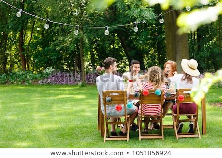 Garden lunch Stock photo © tannjuska