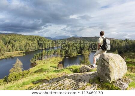 yansımalar · göller · bölgesi · dağlar · göl · İngilizce - stok fotoğraf © backyardproductions