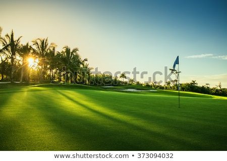 golf course and flag Stock photo © prill