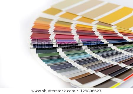 pantone cmyk ral color swatches stock photo © redpixel