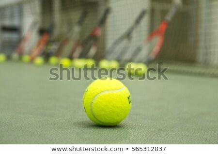 Teniszlabda ütő új fehér sport zöld Stock fotó © tab62