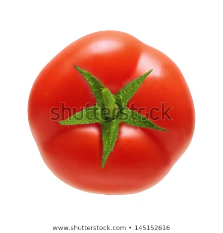 perfect fresh red tomatoes with tomato on background Stock photo © shutswis