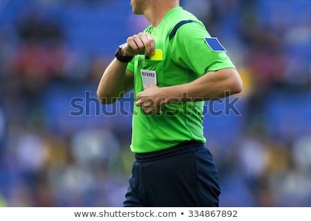 voetbal · arbiter · genoeg · spel · voetbal - stockfoto © jorgenmac