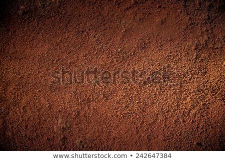 フィールド · 干ばつ · 詳細 · 地球 · 長い - ストックフォト © lunamarina