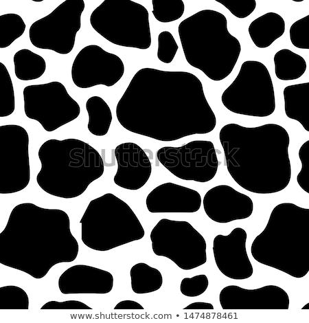 taklit · zebra · deri · doku · hayvan · siyah · beyaz - stok fotoğraf © arenacreative