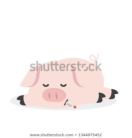 Desenho animado gripe porco vetor ilustração Foto stock © fizzgig